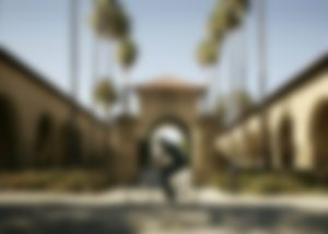 A blurred image of a man riding a bicycle in front of the sandstone buildings of Stanford University's Main Quad with palm trees in the background